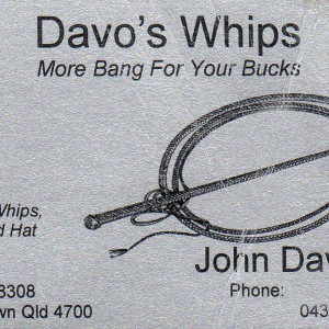 davos-whips150